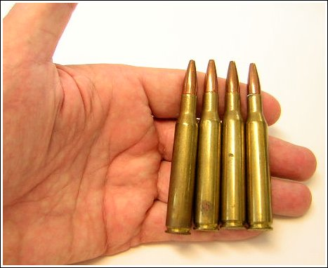 Used Hunting Ammunition